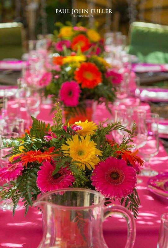 Salsalito Guest House & Wedding Venue