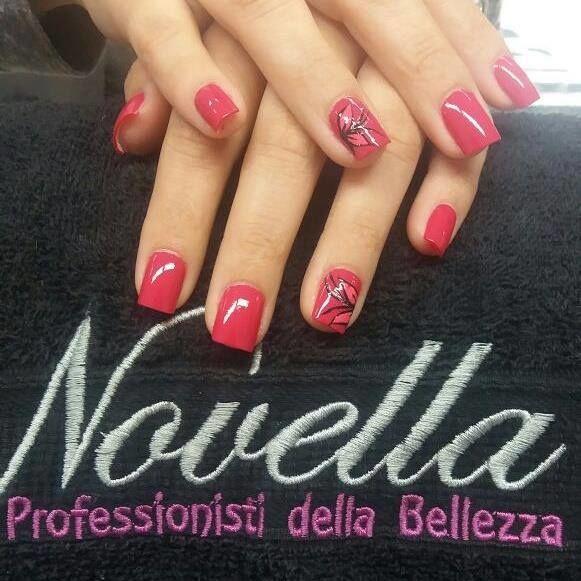 Novella Bellezza