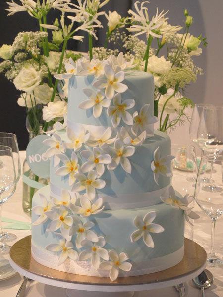 Beispiel: Hochzeitstorte  , Foto: Madame Miammiam.