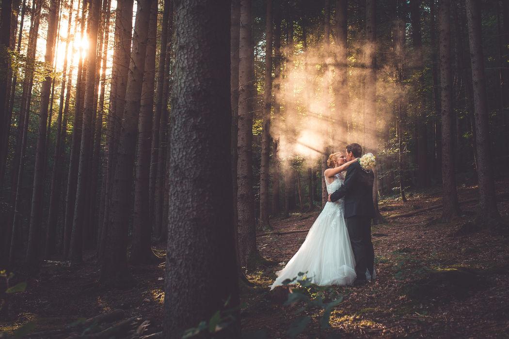 Heiraten im Märchenwald