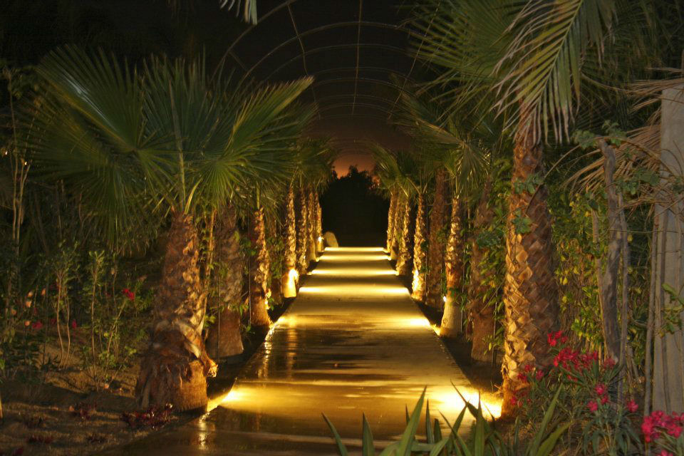 Hacienda Oasis
