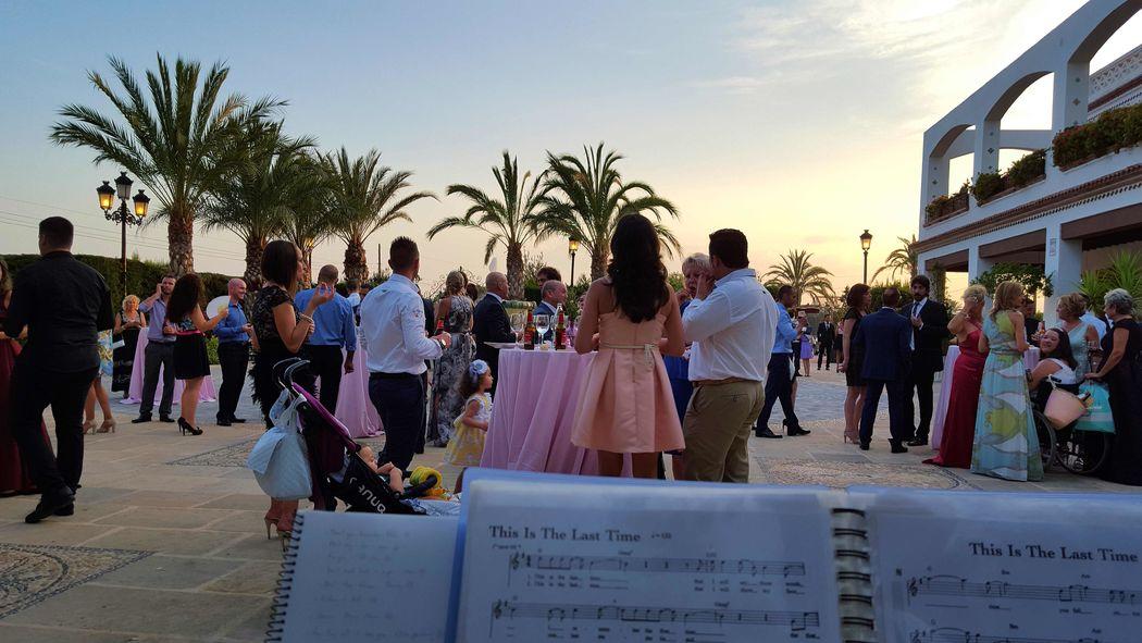 Músicos para ceremonias y cócteles