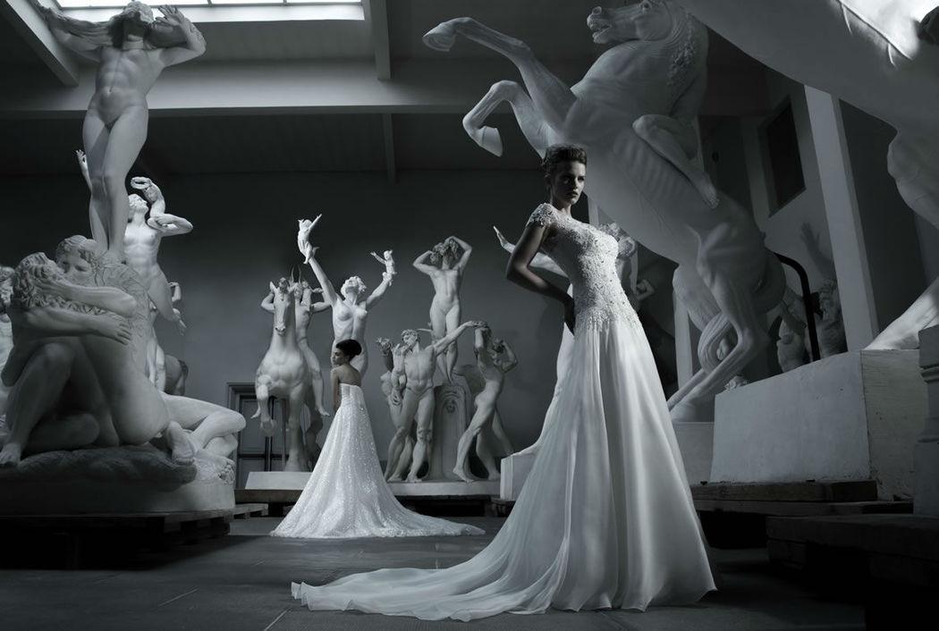 Assia Spose