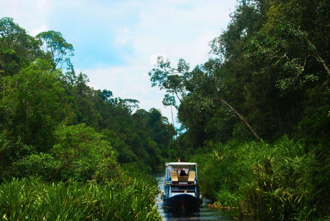 Klotok navegando por el río