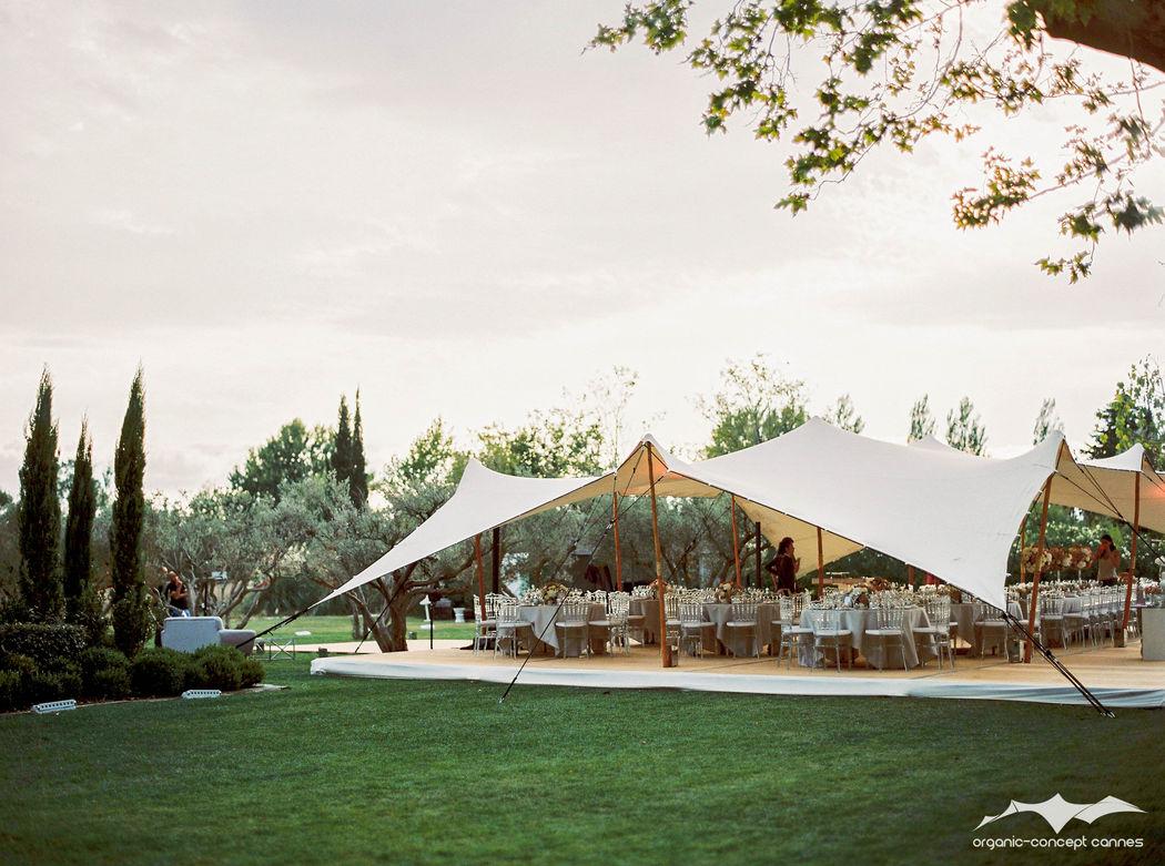 Organic-Concept Stretch 10mx15m