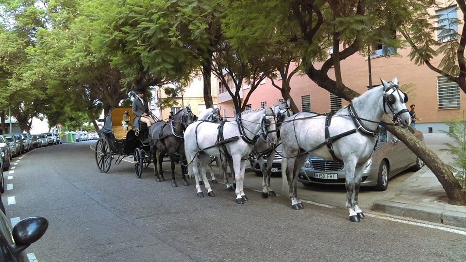 Carruajes Maestranza