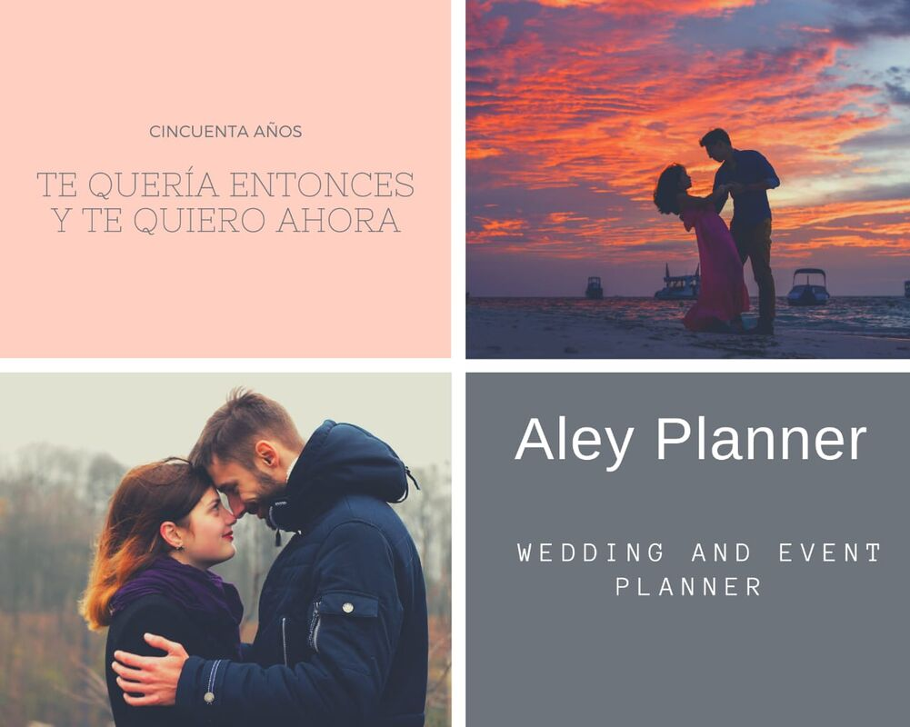 Aley Planner