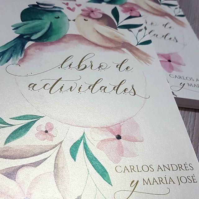 Andrea Mejia Innovaciones