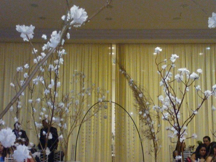 Flores de ipê brancas
