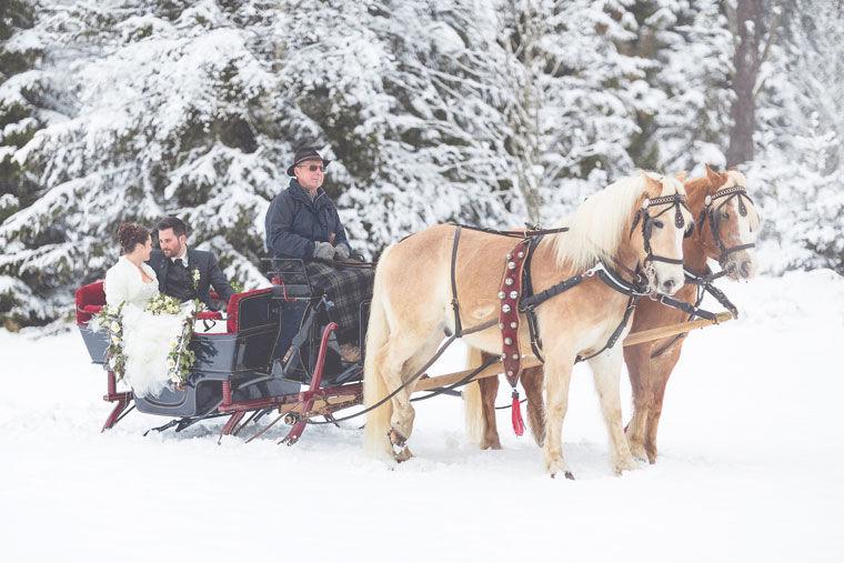 Was kann romantischer sein, als mit dem Pferdeschlitten durch den Privatpark zu fahren?