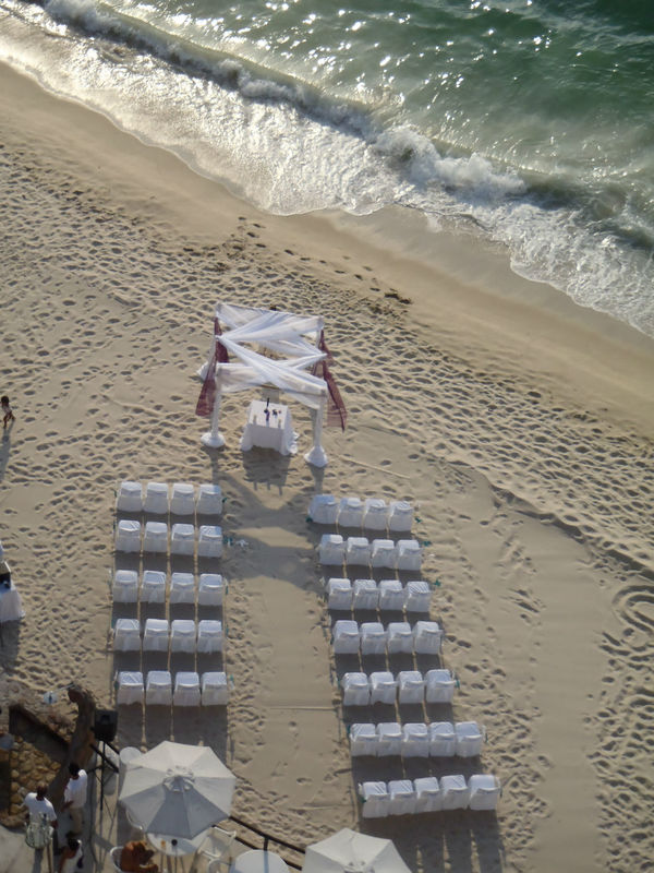 Zevi Events Wedding Planner