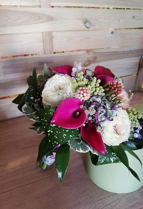 Tagua floristas