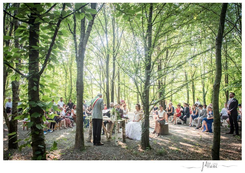 medole_wedding wood