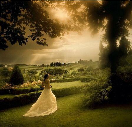 Brilliant Wedding Treviso