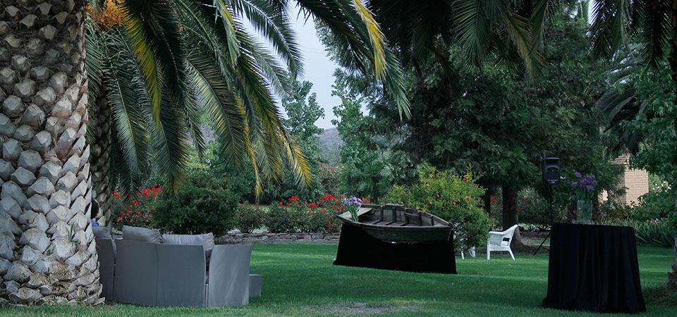 Olivos de Chacabuco
