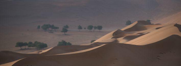 OMAN - Deserto