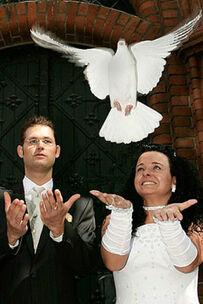 Beispiel: Flug Hochzeitstaube, Foto: Hochzeitstauben Berlin-Brandenburg.