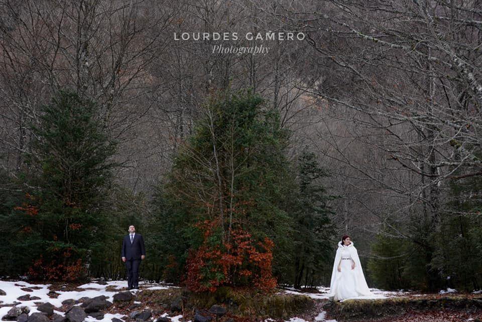 Lourdes Gamero