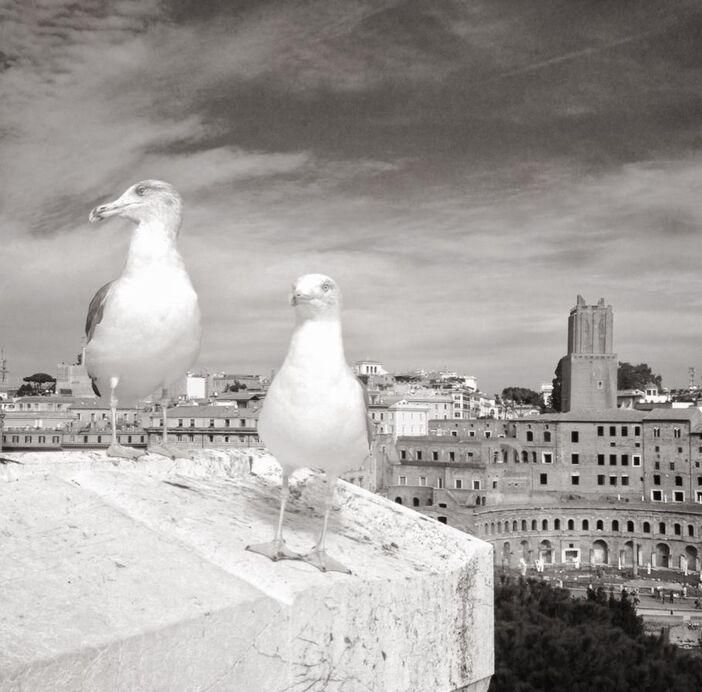 Fabrizio Vinti fotografo