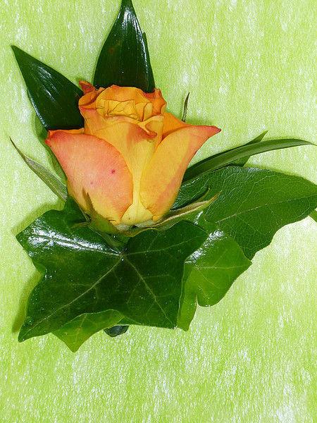 Beispiel: Anstecker für den Bräutigam, Foto: Blumen Steinfort.