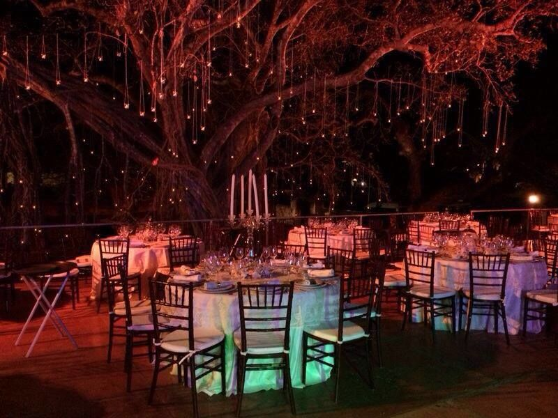 Perfecta para bodas de día y de noche