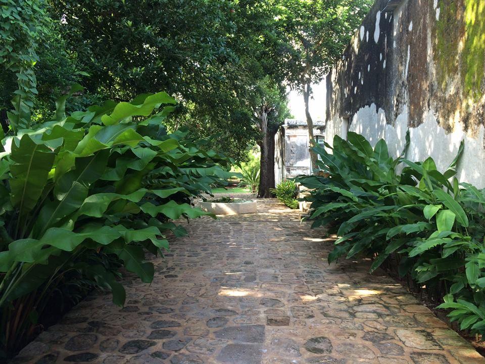 Jardines llenos de historia y romanticismo