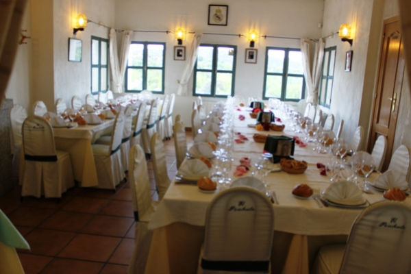 Restaurante El Picachuelo
