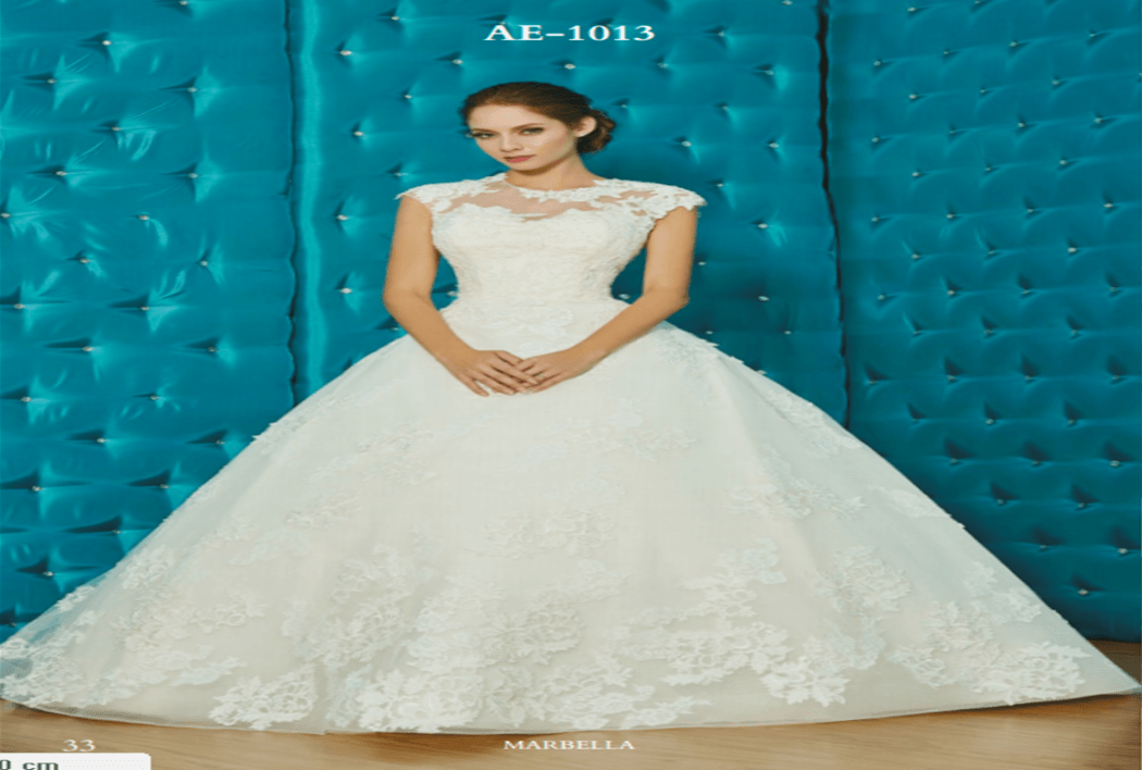 AE-1013