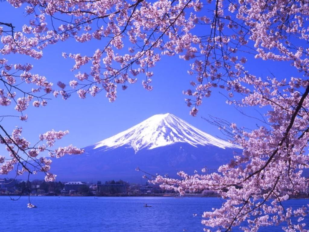 Japón 06 noches.Precio por persona desde 1475€.Solicita más informacion
