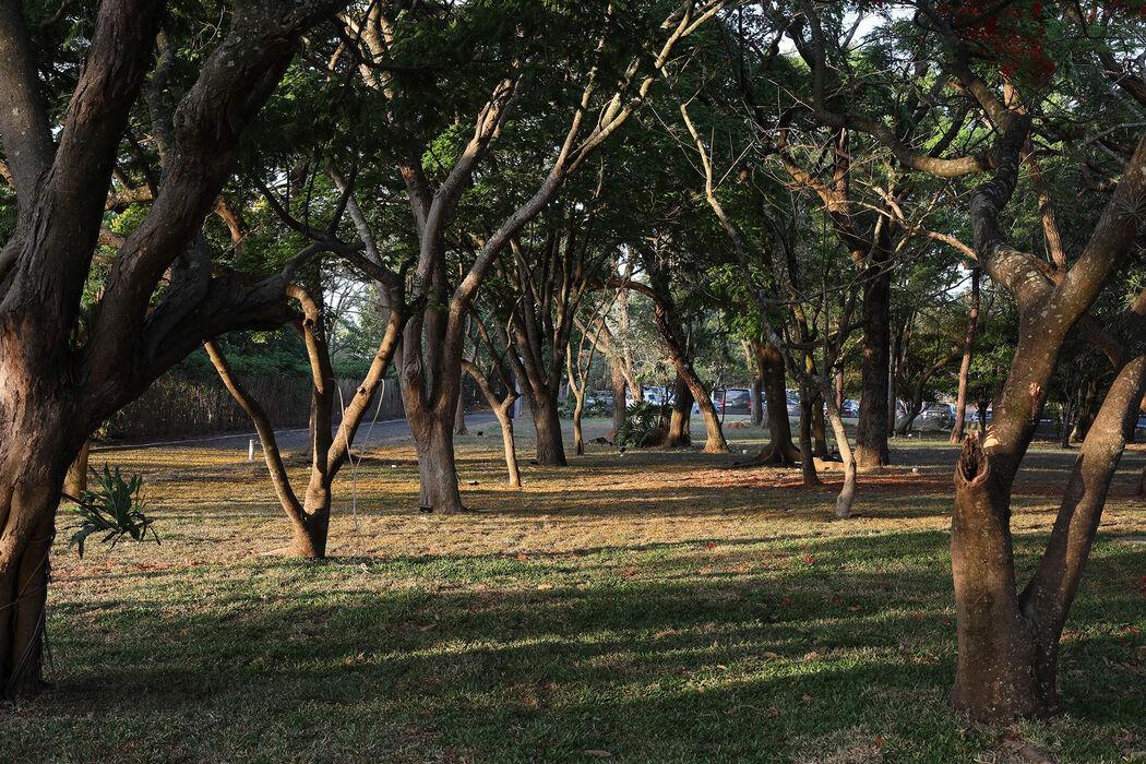 Fazenda Capela do Bosque