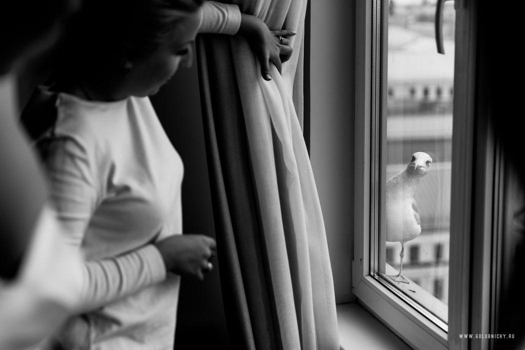 Из окна  номера