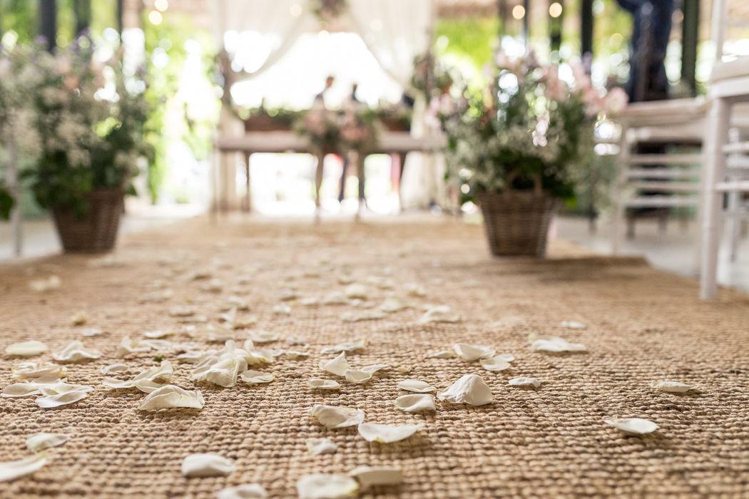 ChinChin & Confetti