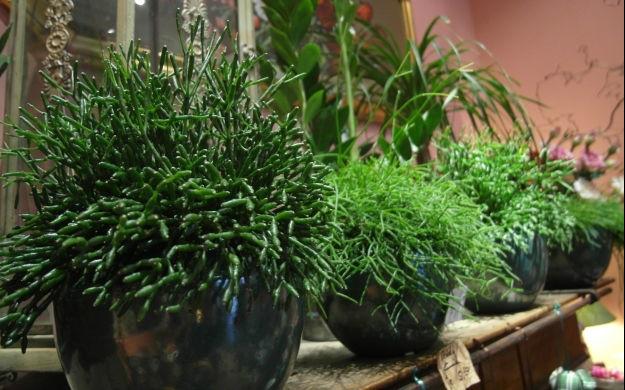 Beispiel: Pflanzenschmuck für Ihre Hochzeit, Foto: stielart.