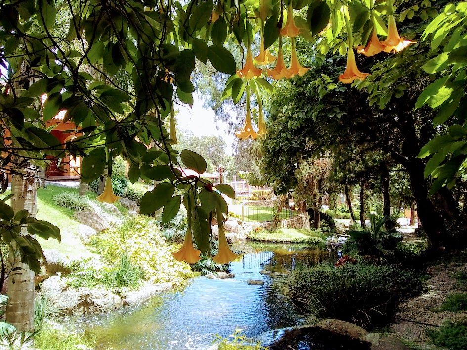 ilCastello Jardín