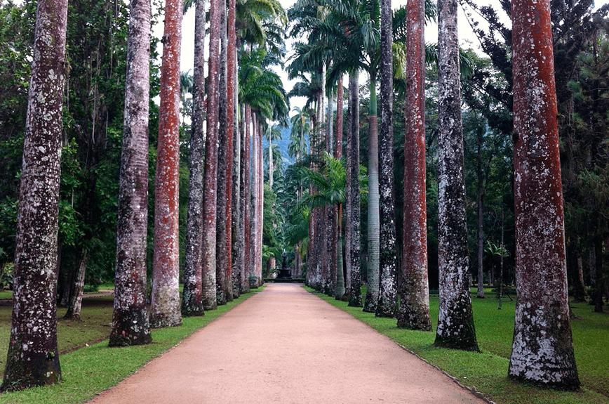 Espaço Botânico