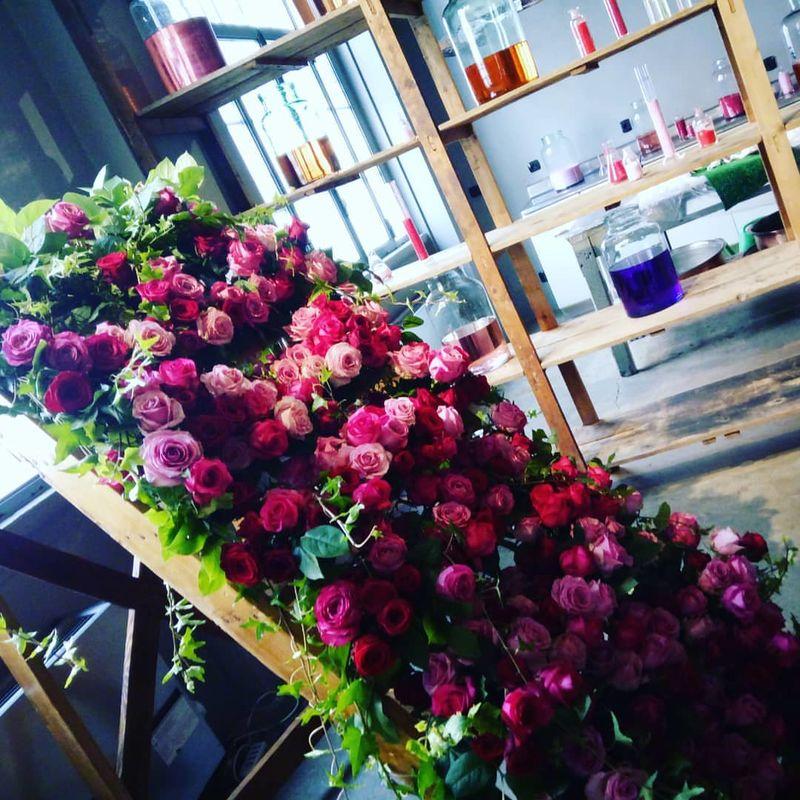 Bread and Roses, Fiori e Dintorni