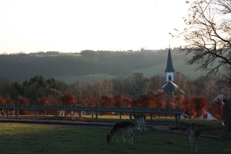 Beispiel: Landschaft, Foto: AKZENT Aggertalhotel Zur alten Linde.