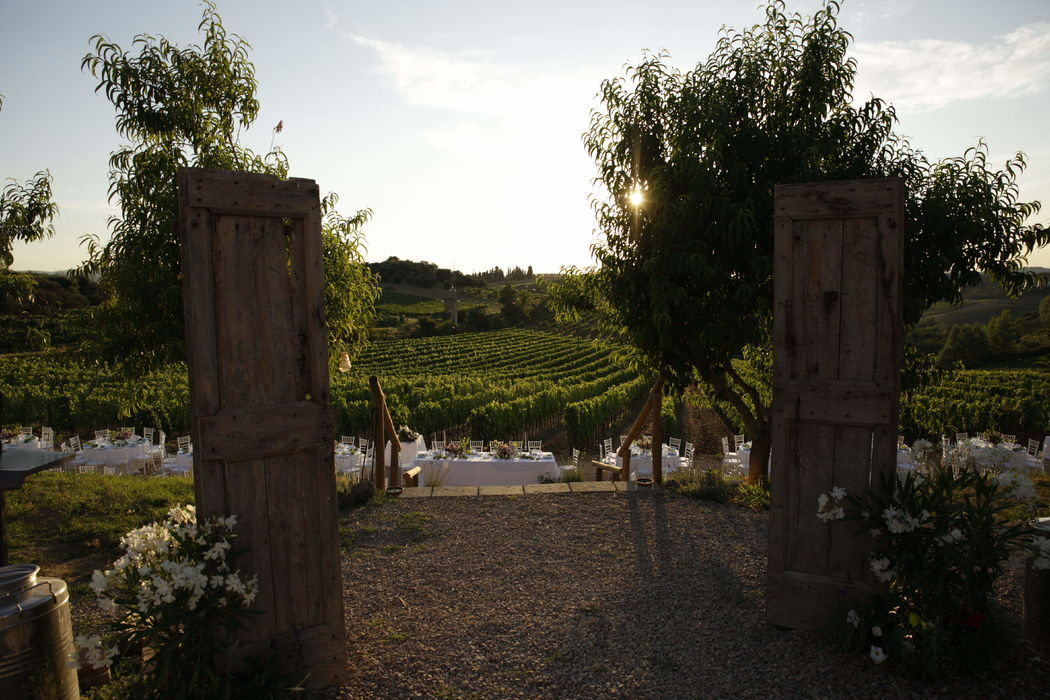 San Donnino Winery