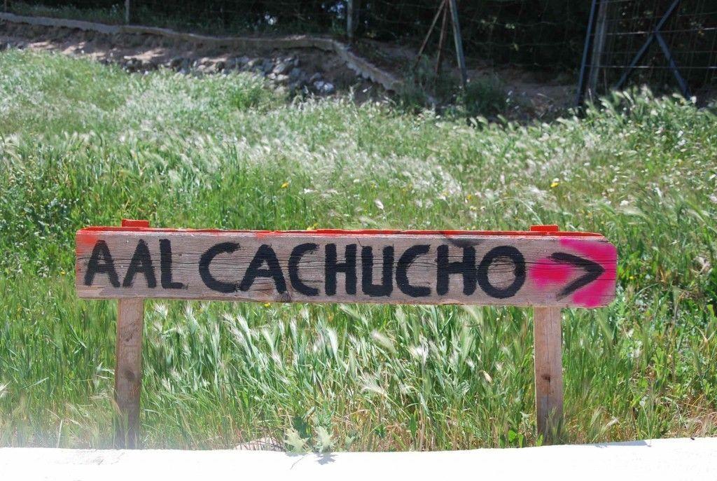 Aal Cachucho