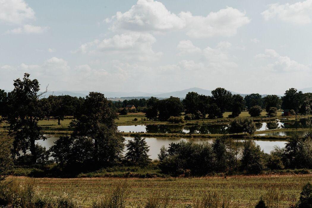 Siedlisko Stary Tartak