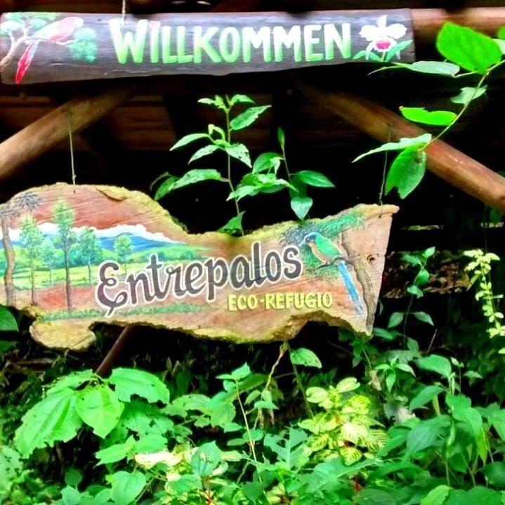 Entre Palos Eco