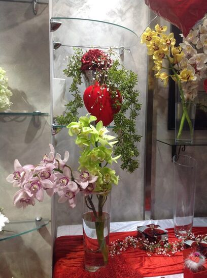 Medinilla flower