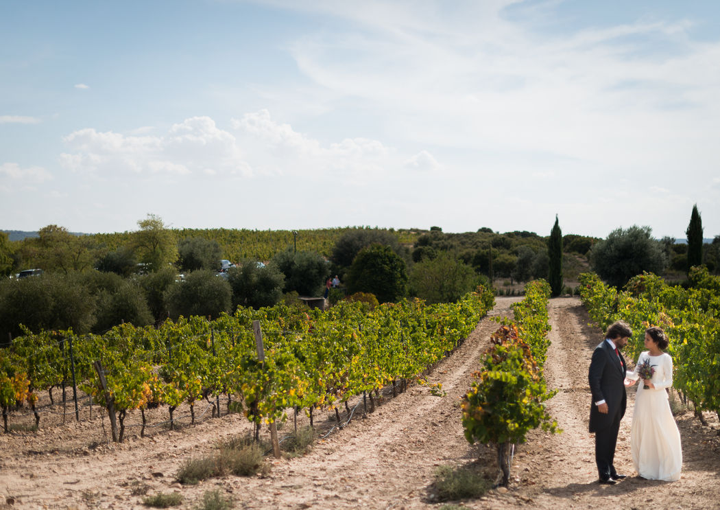 Novios en las viñas