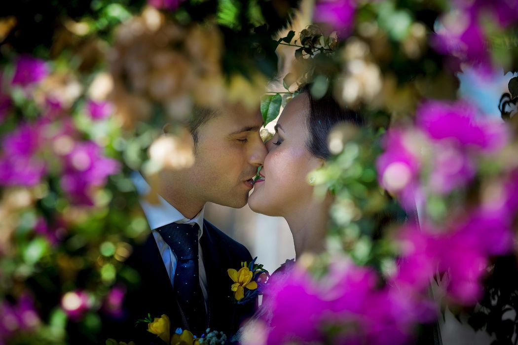 Fotosalva.com