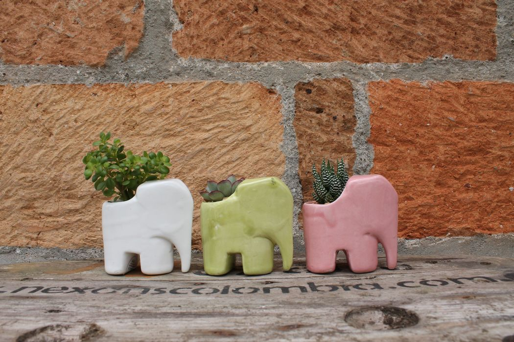 Elefante Mini