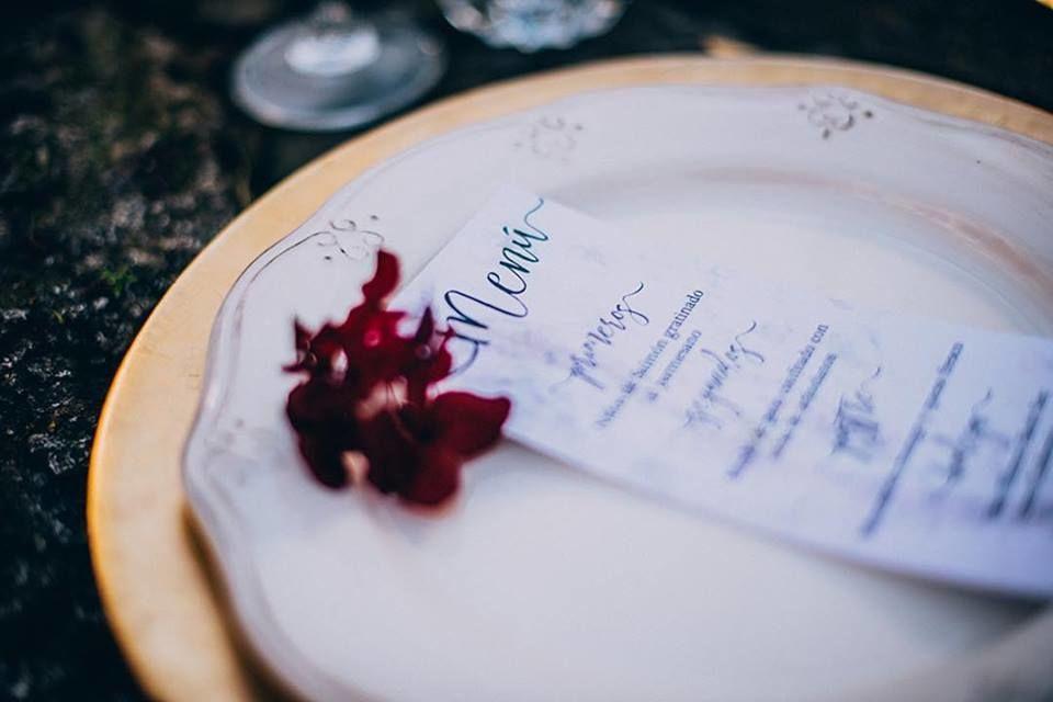 My Wedding Diario
