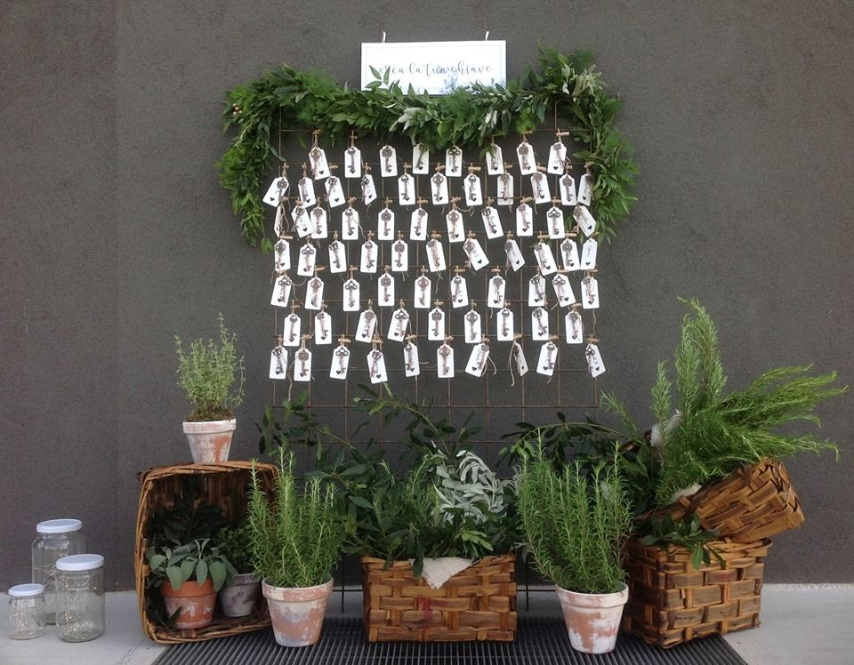 Mutabilis - scenografie vegetali