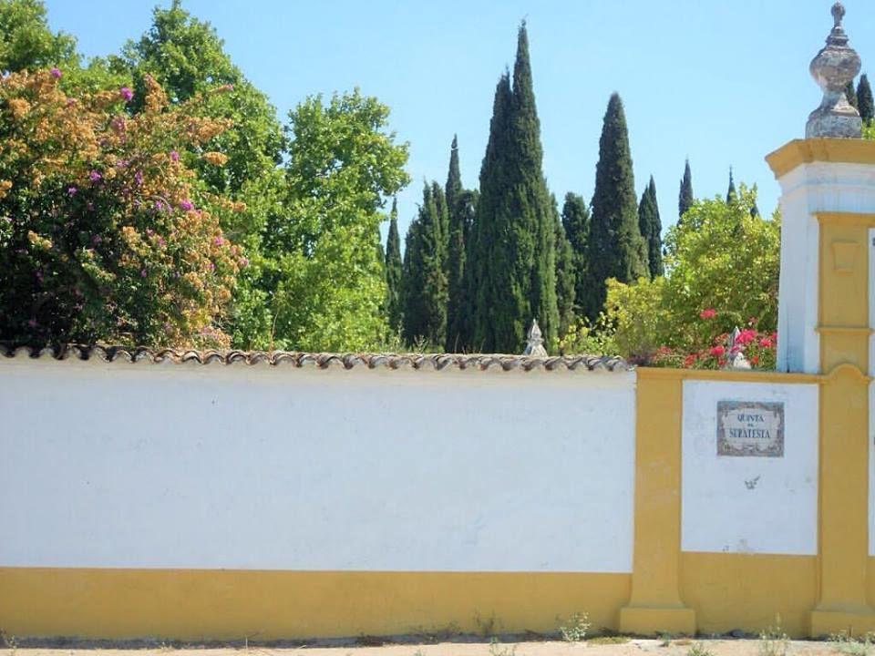 Quinta da Suratesta