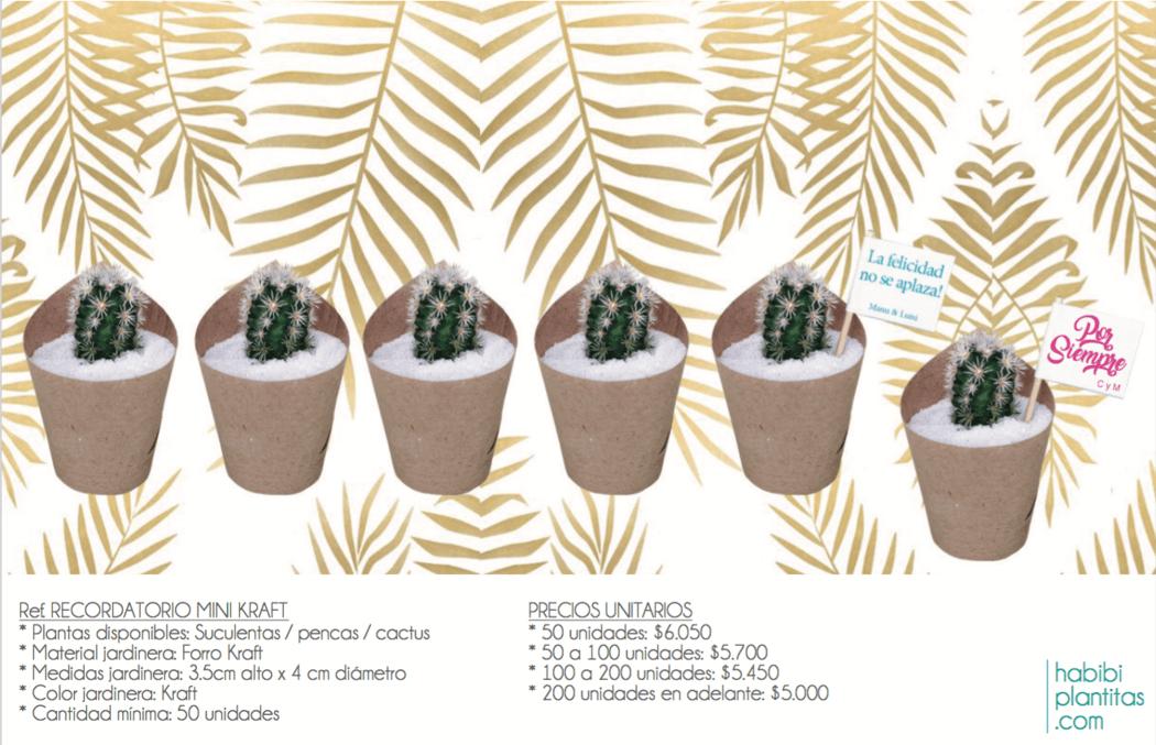 Recordatorios / Ref. MINI KRAFT * Planta natural