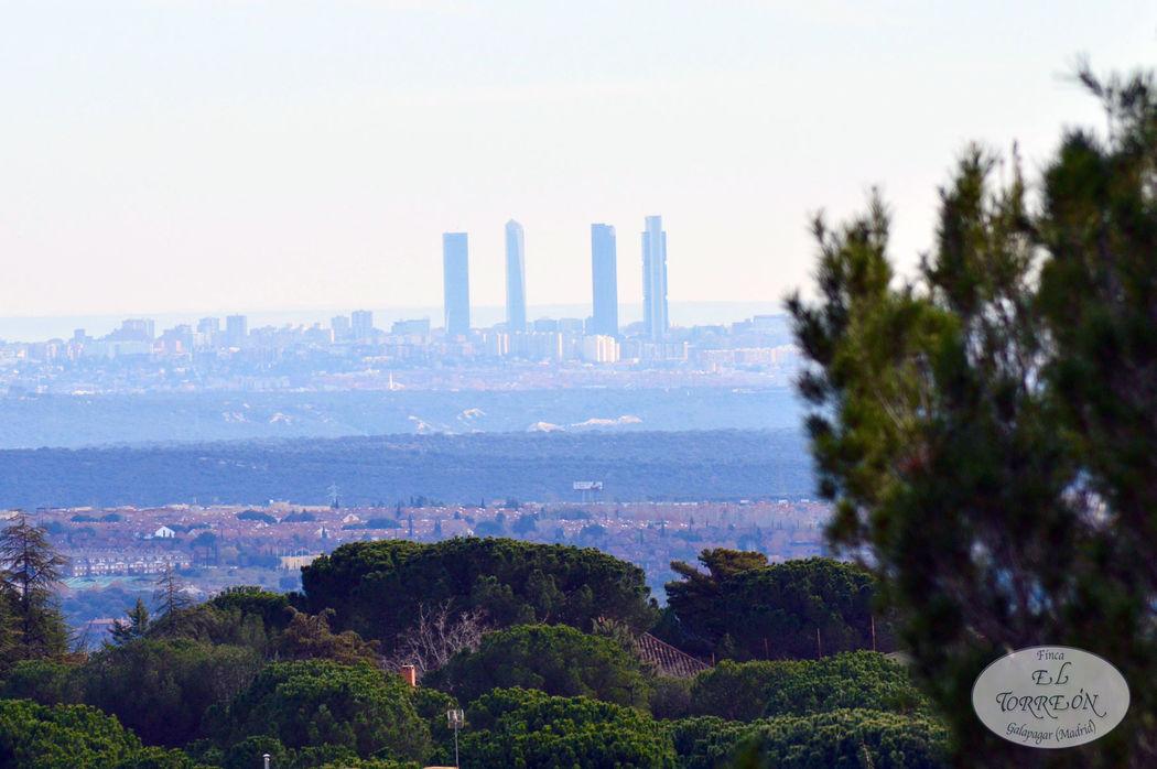 Vistas de las Cuatro Torres desde el jardín Madrid